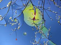 springtime.... von zyklop