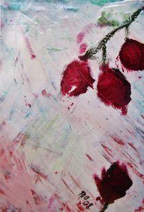 Hängende Rosen by mo08