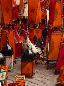 A rooster in Fez von kiellapa