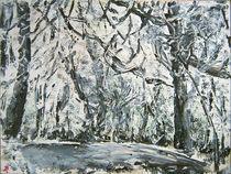 Verschneiter Park von Renée König