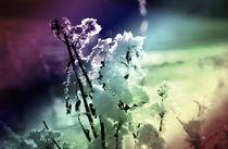 Winterzauber by Juana Kreßner