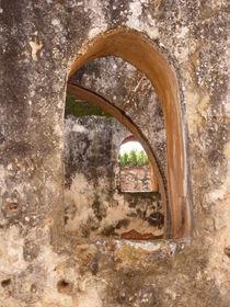 Stork's ruins V von kiellapa