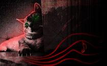cat von kiellapa