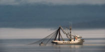 Fischkutter von piri