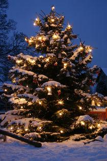 Weihnachtsbaum by Katrin Lübeck