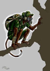 Military Monkey von Marisa Joléne Schulze