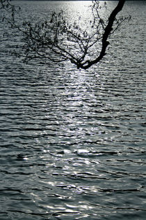 Schwarzes Wasser by Maria Reichenauer