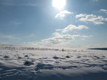 Winterzauber von Evelyn Wozny