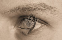 Im Auge by Diana Reimansteiner