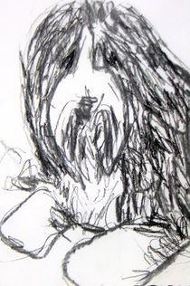 Bearded Collie by Patricia van Dokkum