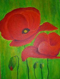 Mohnblumen by Bärbel Drechsler