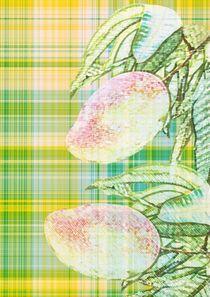 Mango gelb und grün