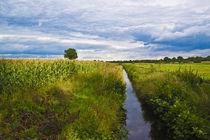 Landschaft, Holsteiner Auenland von pahit