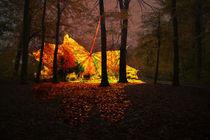 Goldener Oktober von pahit