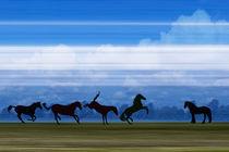 Pferde am Horizont 1 by pahit