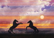 Spiel im Sonnenuntergang von pahit