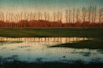 Heimat. Nach dem Regen 1, Landschaft by pahit