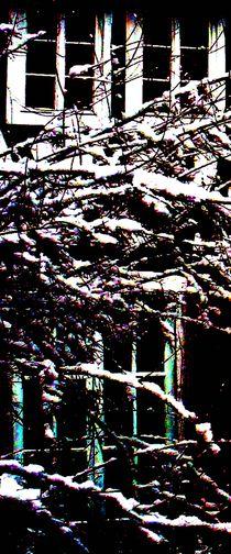 zeitfenster von lisa winter