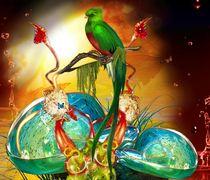 paradisvogel by nora gharbi