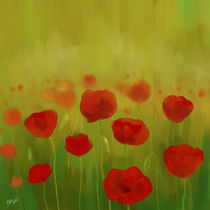 field of poppies by raziel