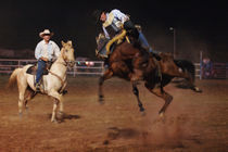 Rodeo- by holmsohn by holmsohn