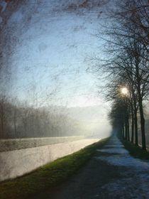 Darkness von Andrea Meyer