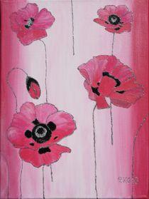 Pink poppy by Petra Koob
