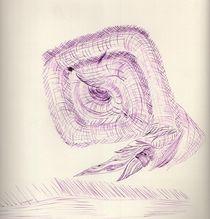Nautilus von Oleg Kappes