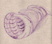 Muschel von Oleg Kappes