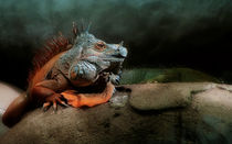 Jurassic Park  von annette nettesart