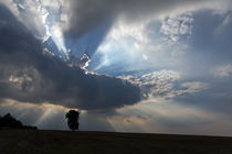 Zwischen Himmel und Erde von Wolfgang Dufner
