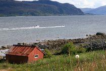 Rote Hütte am steinigen Ufer eines Fjords in Norwe by fotodil