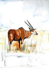 Antilope von Annegret Hoffmann