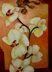 Orchideen von ERIKA FUSS