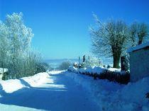 Winterlandschaft by Ute Bauduin