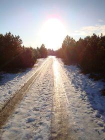 Waldweg im Winter by Ute Bauduin