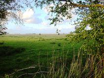 Landschaft von Ute Bauduin
