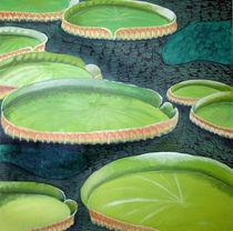 Lotuseffekt von Ilona Metscher