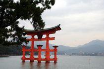 Japan - Schwebendes Torii von Miyajima  von Frank Seidel