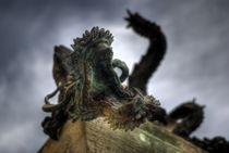 Zorn des Drachen von Sven Dressler
