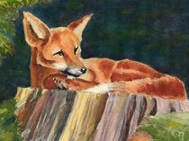 Fuchs auf Baumstamm by Norbert Hergl