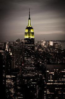 Empire State Building bei Nacht von Frank Walker