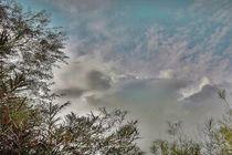die Wolken von artpic