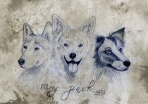 my pack by Sarina Pillusch