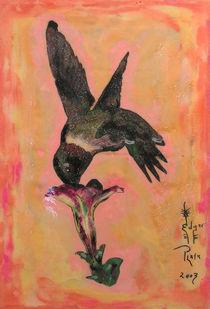 Colibri by Edgar Plata