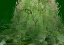 Geschöpf der Wälder von Wolfgang Schwerdt
