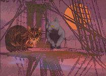 Rotbart und Graulocke - eine Katzenfreundschaft von Wolfgang Schwerdt