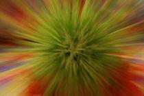 Farbenspiel1 von Christine Amstutz