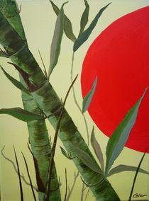 Bambus von Jürgen Lang