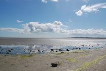 Strand von Dublin III by julita